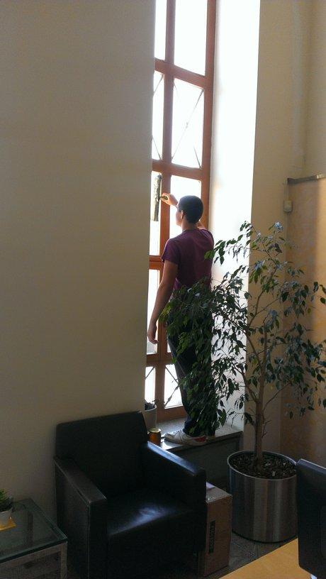 Upratovanie Bratislava, umývanie okien